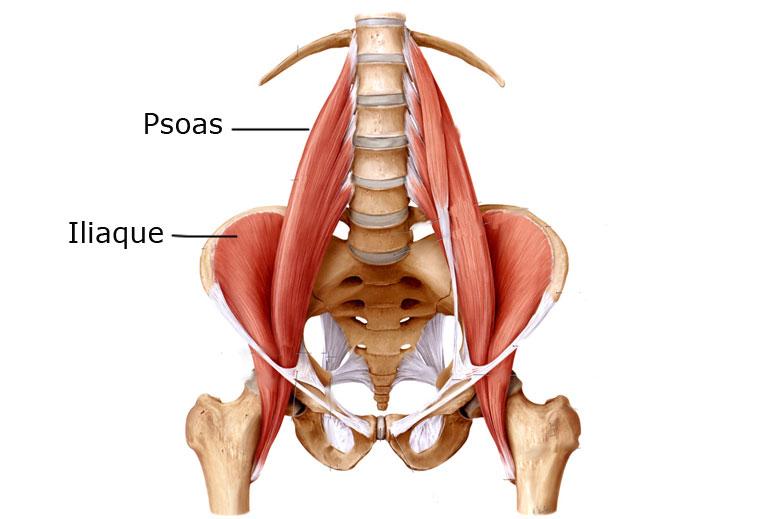 La douleur le dessous du ventre chez les femmes enceintes les reins